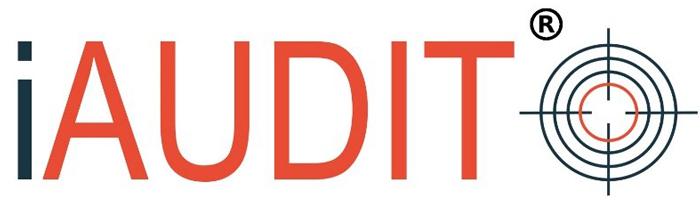 logo-iaudit